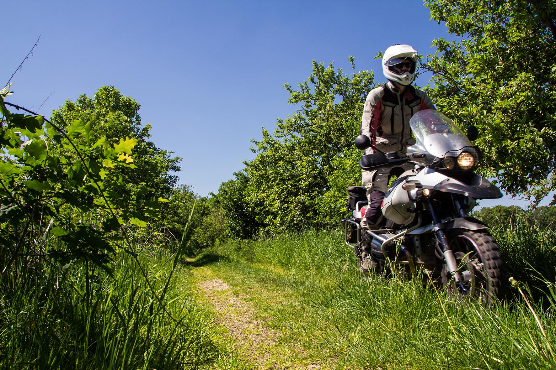 Motorrad Auf Einem Waldweg